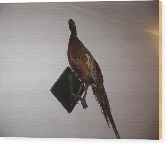 Pheasant Wood Print
