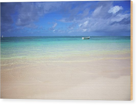 Photo At The Beach With A Bright Blue Wood Print by Robertmandel
