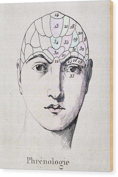 Phrenology Head Chart Wood Print