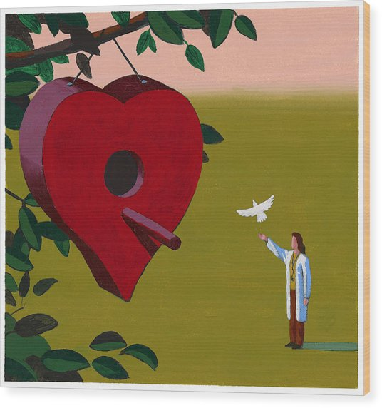 Physician Releasing Dove Wood Print by Jonathan Evans