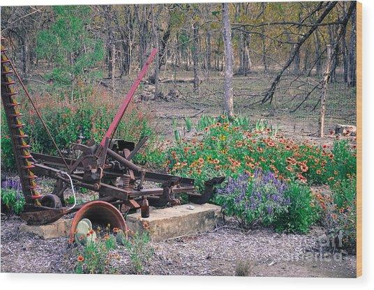 Pickle Creek Ranch Botanical Garden Wood Print