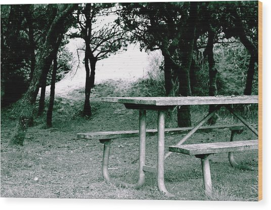 Picnic Blues  Wood Print by Sheldon Blackwell