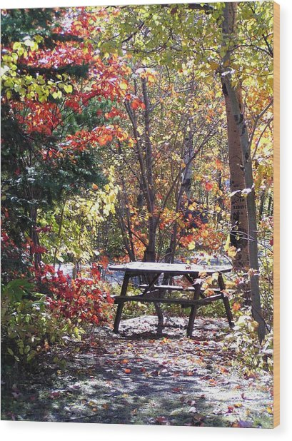 Picnic Memories Wood Print