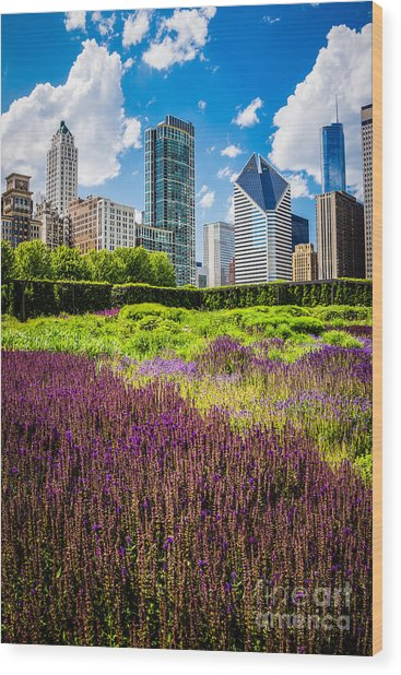 Picture Of Chicago Skyline With Lurie Garden Flowers Wood Print