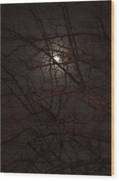Pieces Of The Moon Wood Print by Guy Ricketts