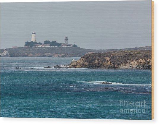 Piedras Blancas Lighthouse A2155 Wood Print by Stephen Parker