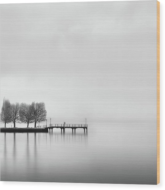 Pier With Trees (2) Wood Print by George Digalakis