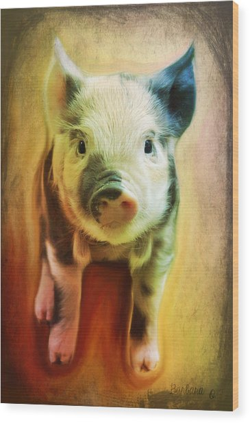 Pig Is Beautiful Wood Print