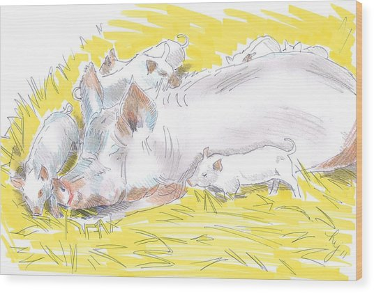 Pig Sow And Piglets Wood Print