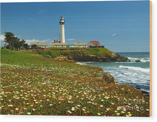 Pigeon Lighthouse Wood Print