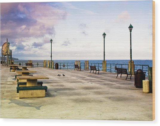 Pigeon Meeting At Redondo Pier Wood Print