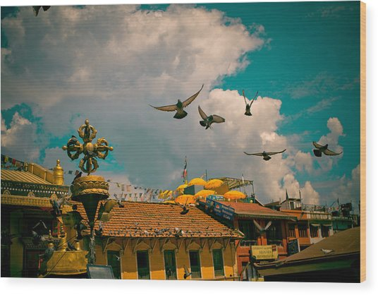 Pigeons Near Monastery In Boudnath Kathmandu Wood Print