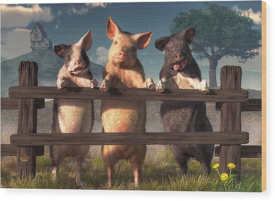 Pigs On A Fence Wood Print