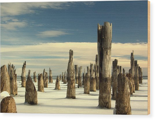 pilings II Wood Print