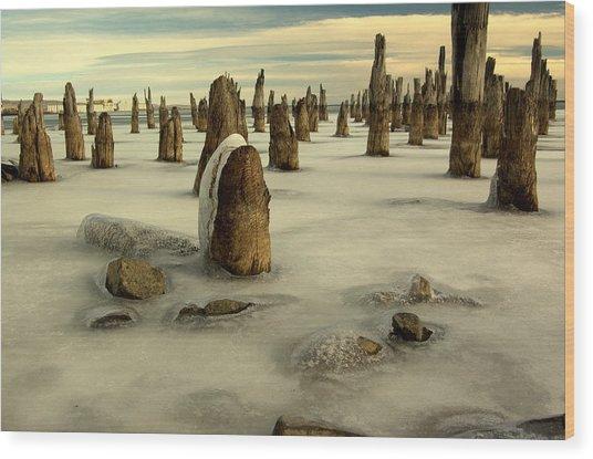 pilings VII Wood Print