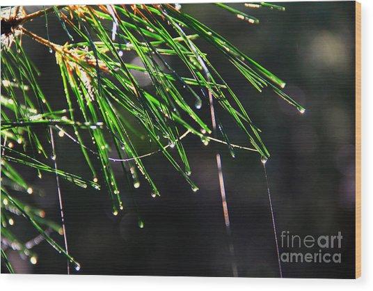 Pine Dew Wood Print