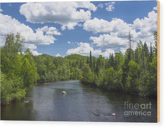 Pine River Wood Print