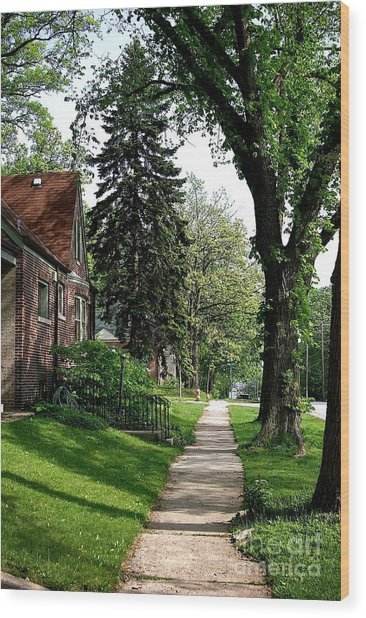 Pine Road Wood Print
