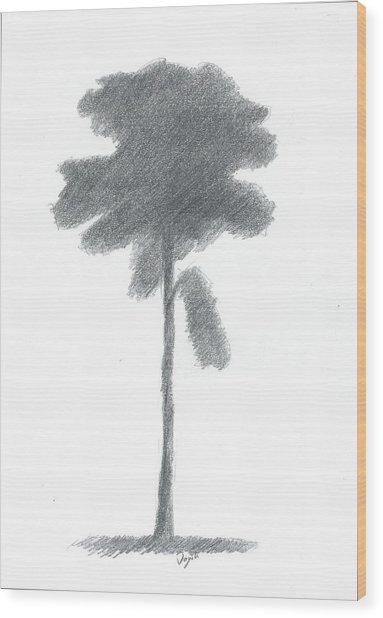 Pine Tree Drawing Number Three Wood Print by Alan Daysh