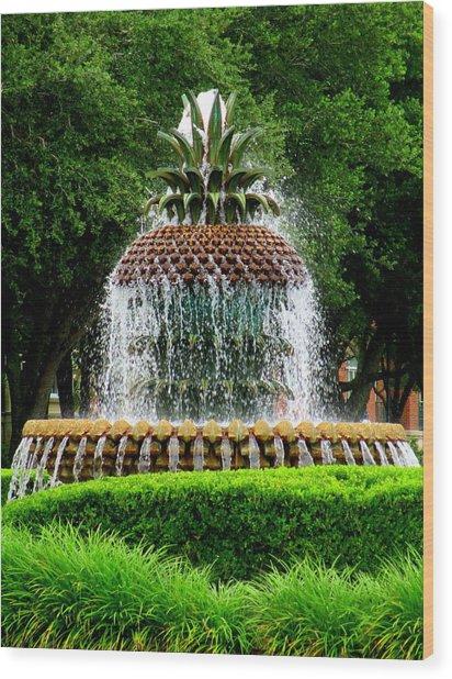 Pineapple Fountain 2 Wood Print