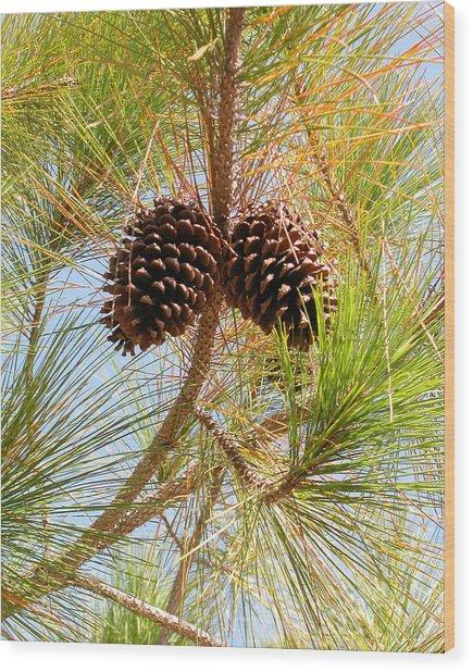 Pinecone's Wood Print
