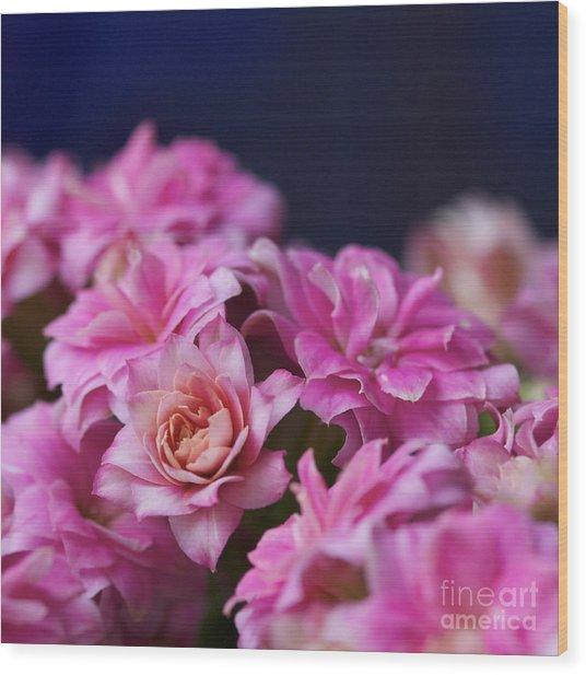 Pink And Blue II Wood Print by Pamela Gail Torres