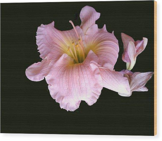 Pink And Close Wood Print