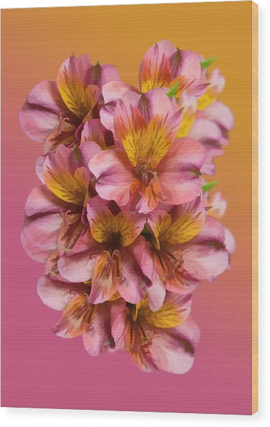 Pink And Gold Wood Print by Delores Knowles