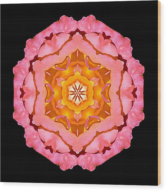 Pink And Orange Rose I Flower Mandala Wood Print