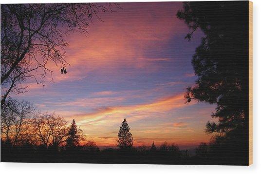 Pink And Orange Wood Print