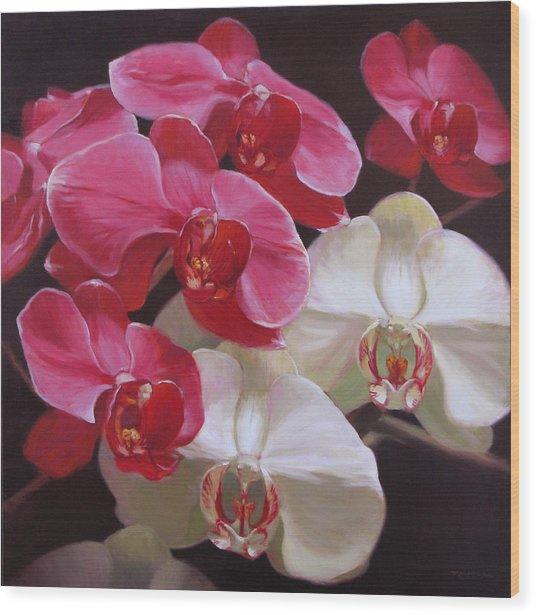 Pink And White Orchids Wood Print by Takayuki Harada