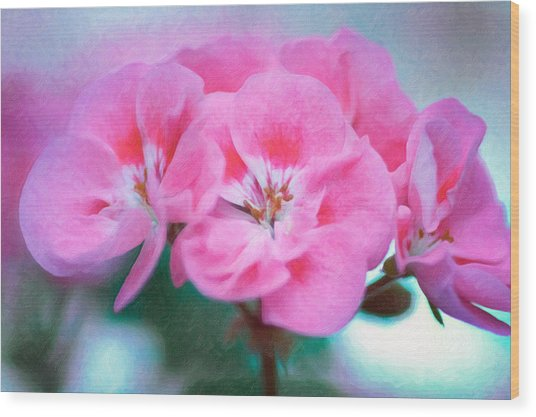 Pink Beauty Wood Print