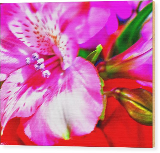 Pink Bouquet Wood Print