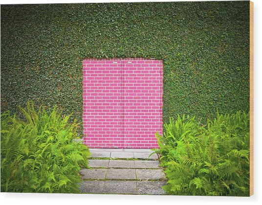Pink Brick Door Wood Print