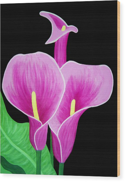 Pink Calla Lillies 2 Wood Print