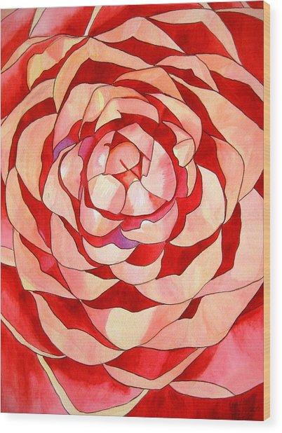 Pink Camellia Macro Wood Print by Sacha Grossel