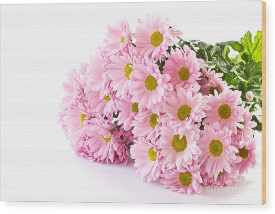 Pink Chrysanthemum Prints Wood Print by Boon Mee