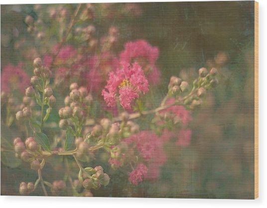 Pink Crepe Myrtle Wood Print