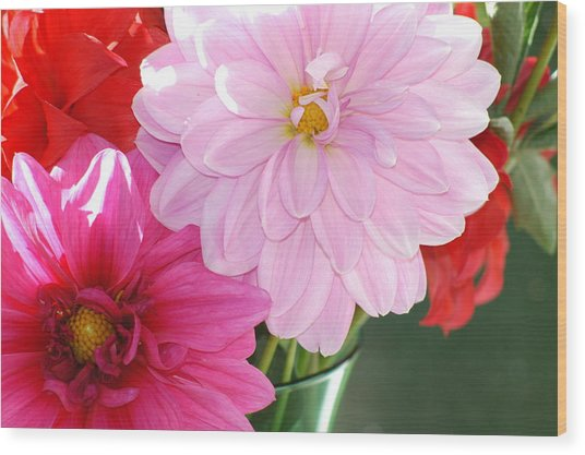 Pink Dahlias In The Morning Wood Print