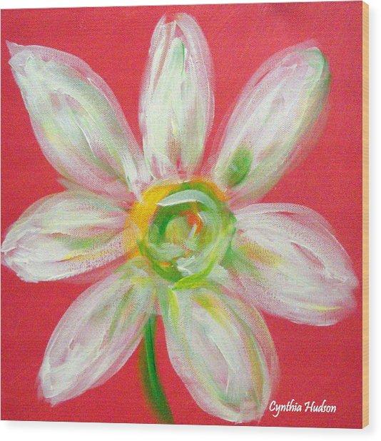 Pink Daisy Wood Print by Cynthia Hudson