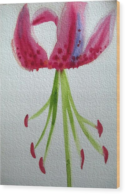 Pink Day Lily Wood Print by Sacha Grossel