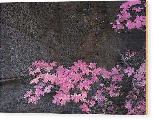 Pink Fall Colors In Sedona Arizona Wood Print