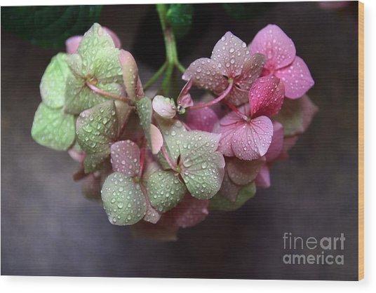 Pink Green And Rain Wood Print
