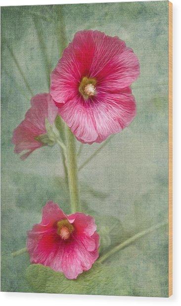 Pink Hollyhocks Wood Print