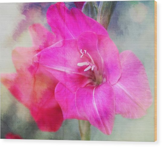 Pink In The Clouds Wood Print by Cathie Tyler