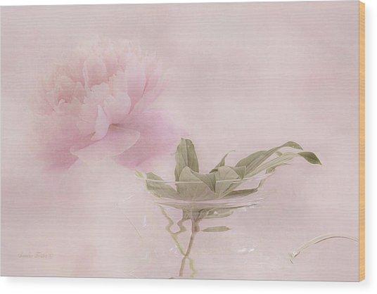 Pink Peony Blossom In Clear Glass Tea Pot Wood Print