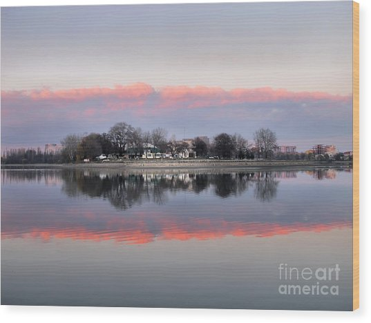 Pink Reflection  Wood Print