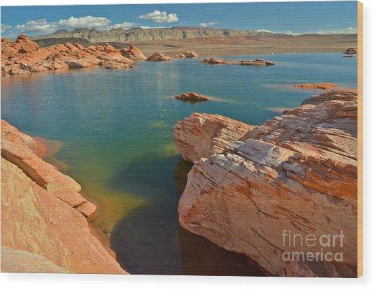 Pink Rocks Blue Water Wood Print