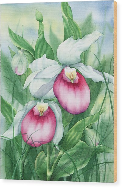 Pink Showy Lady Slippers Wood Print