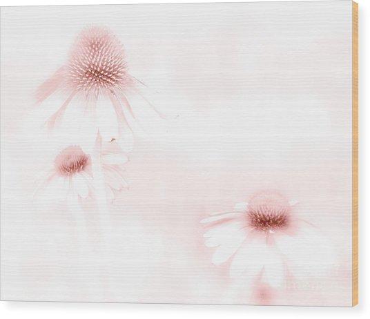 Pink Sonata  Wood Print